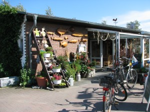 campingplatz-schaprode-rezeption